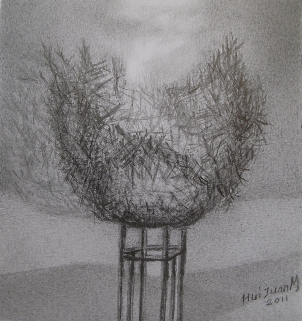 11,The Nest 33x21 Pencil Drawing 2011