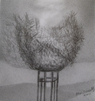 11,The Nest 鸟巢33x21.2011,Pencil Drawing 铅笔素描